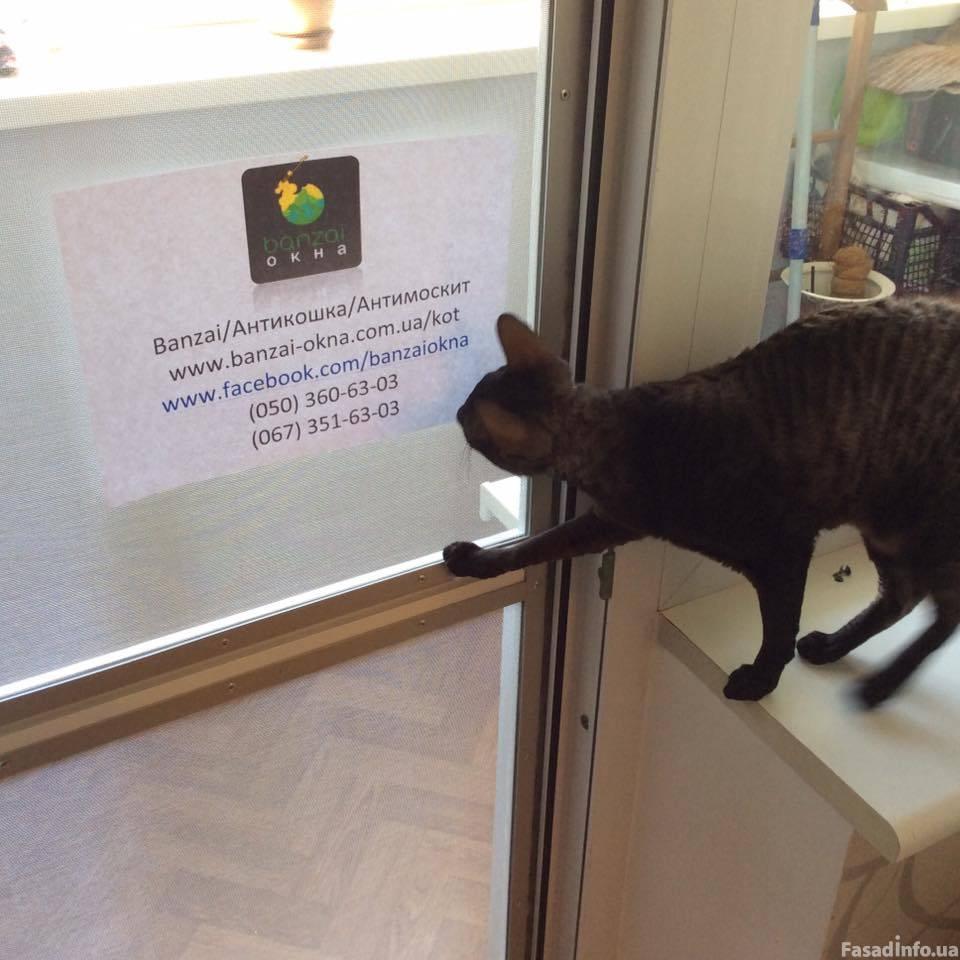 Защитная дверь на балкон для кота