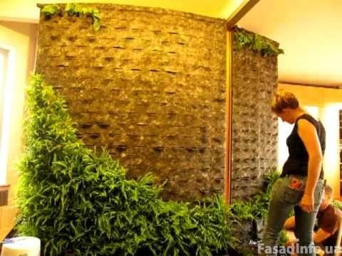 Создание живых декоративных стен