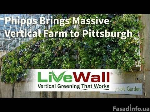Оригинальные зеленые стены